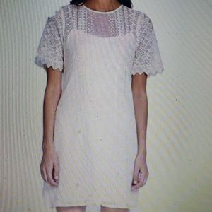 Nanette Lepore Quest Dress Ivroy Eyelet New 6